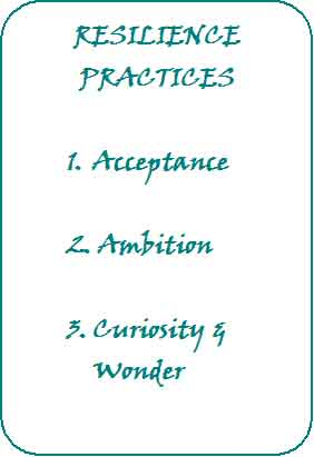 Resilience Practices