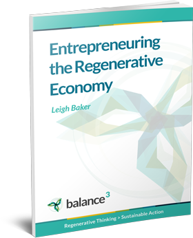 Entrepreneuring the Regenerative Economy eBook